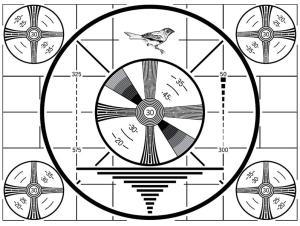 bs-bird-logo
